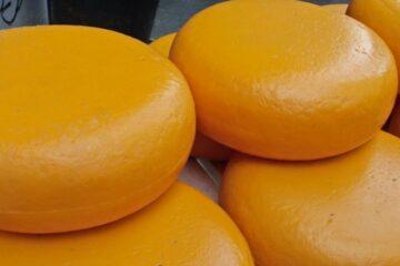 cosa c'è dentro al formaggio cheddar?