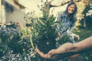 Fare giardinaggio aiuta il buonumore